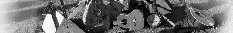 Grupo de música tradicional