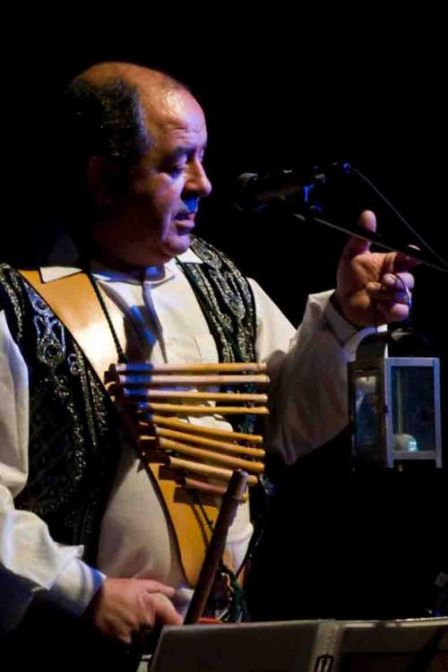 Amalgama-folk